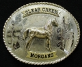 clear-creek-morgans